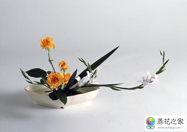 日本插花称为图片