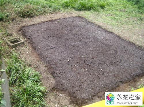养花怎么需要合适的土壤